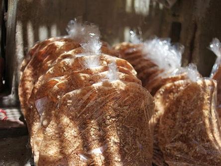 Về Bắc Giang thưởng thức miếng bánh đa Thổ Hà giòn rụm