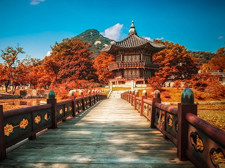 Visa du lịch Hàn Quốc 2018