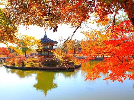 Visa du lịch và thương mại Hàn Quốc uy tín, giá hấp dẫn