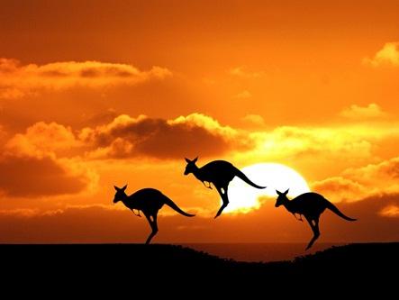 Visa Úc uy tín tại Hà Nội, Hồ Chí Minh, Đà Nẵng
