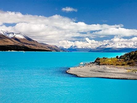 Dịch vụ làm Visa New Zealand, tỉ lệ chấp thuận cao