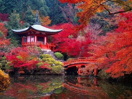 Cảnh sắc tuyệt đẹp của đất nước Nhật Bản