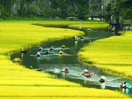 Biểu mẫu hồ sơ xin cấp Visa, Thị thực, Thẻ tạm trú cho người nước ngoài tại Việt Nam