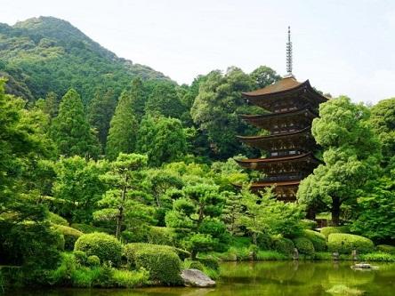 Visa du lịch Nhật Bản giá rẻ và nhanh chóng