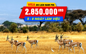 VISA NAM PHI