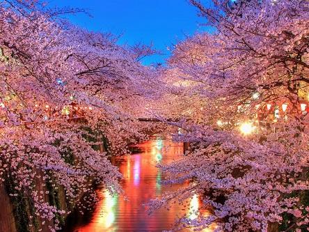 Visa Nhật Bản nhanh chóng, giá rẻ
